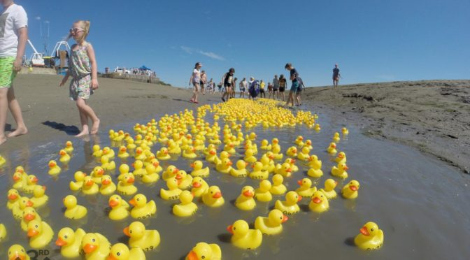 Racing Duck Invasion